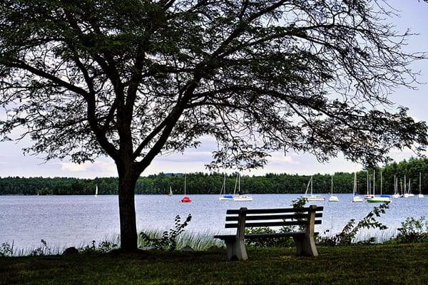 Lake Massabesic by Larisa